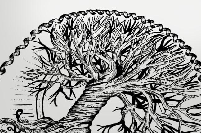 Tree Of Life Terryemi